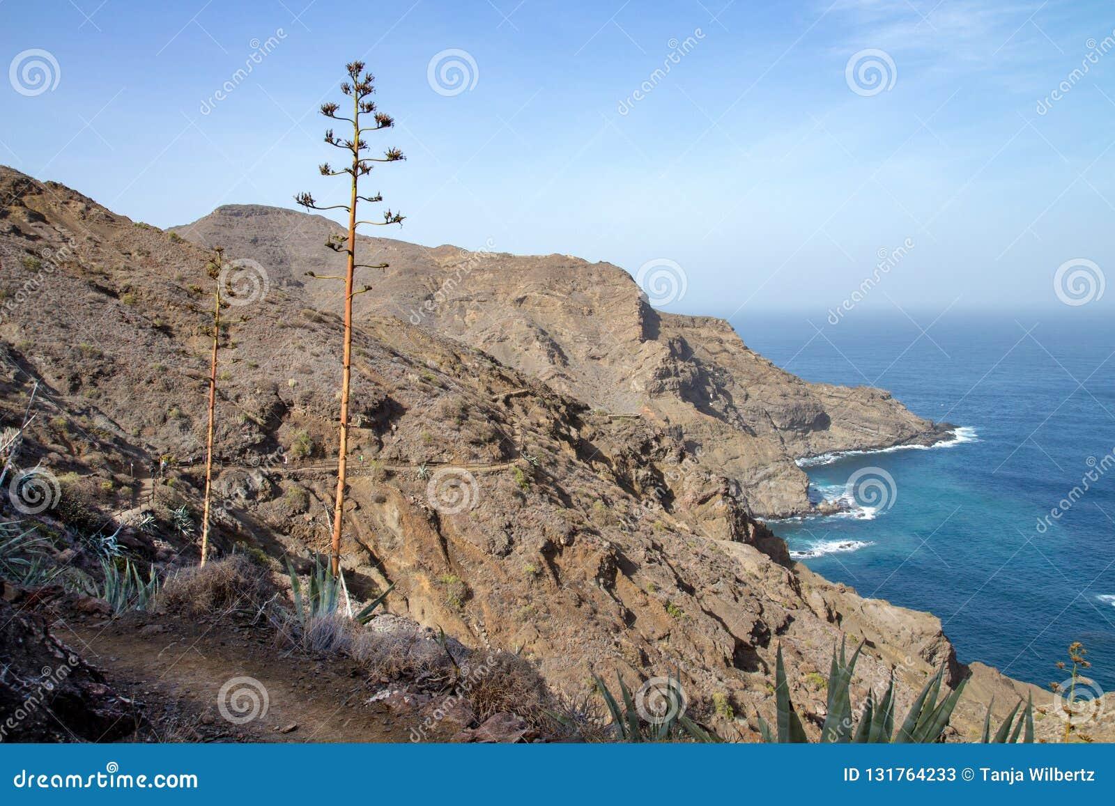 Bonita vista de la costa del norte con el océano y de montañas en el La Gomera