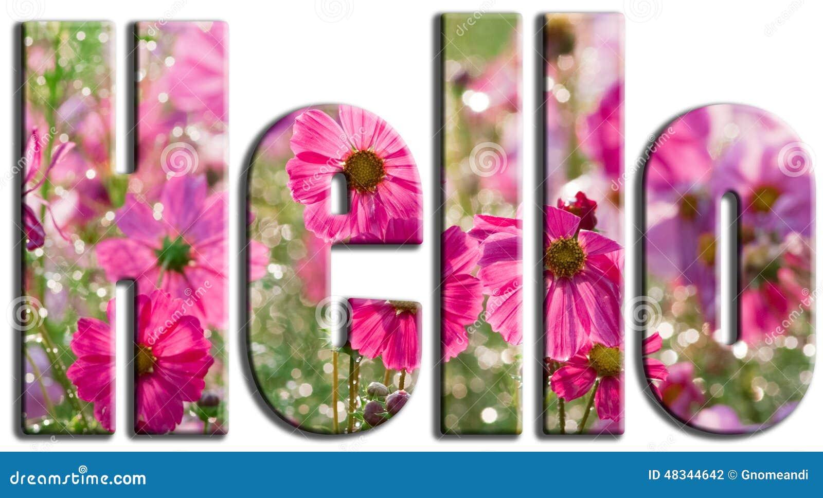 Jeudi 26 décembre  Bonjour-fleurs-de-rose-48344642