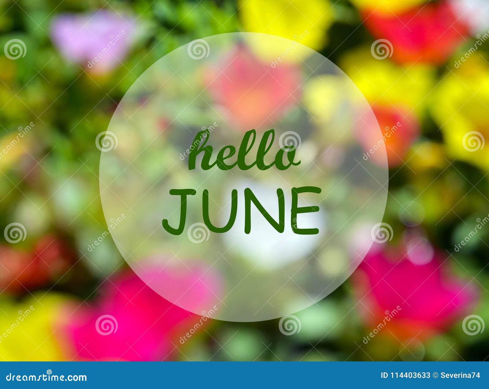 Bonjour juin Faire bon accueil à la carte avec le texte sur le fond floral brouillé naturel Concept d été