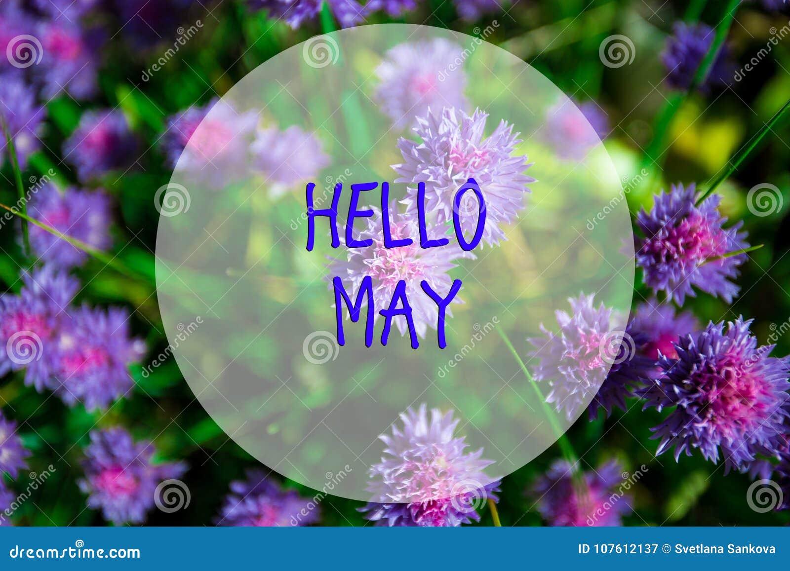 Bonjour mai, message avec la belle scène de nature