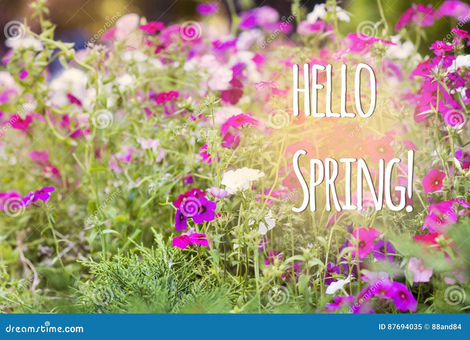 Bonjour message de ressort avec belles fleurs