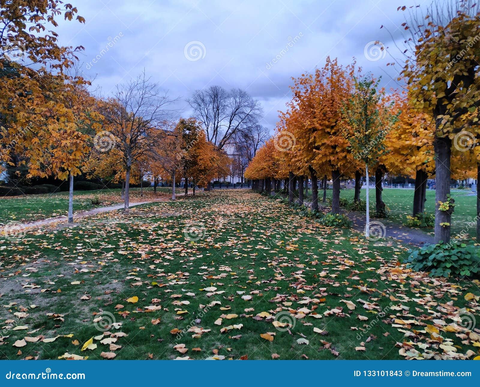 Bonn, Deutschland