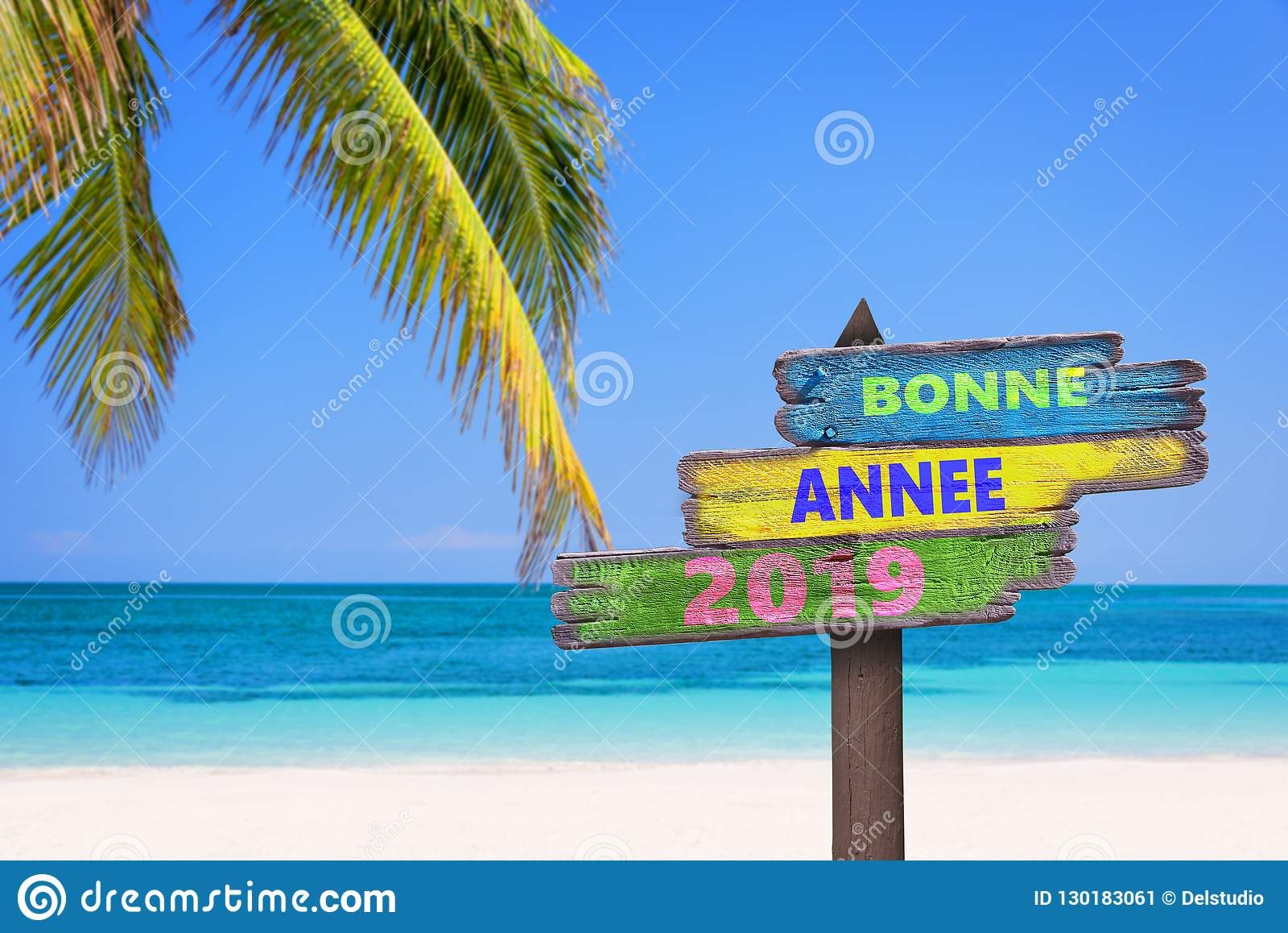 Bonne annee 2019 meaning happy new year in French on a colored wooden direction signs, beach and palm tree