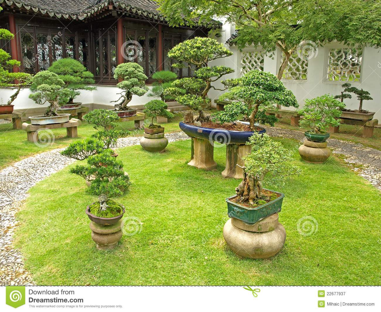 Bonsai Garden Royalty Free Stock Photography Image 22677937