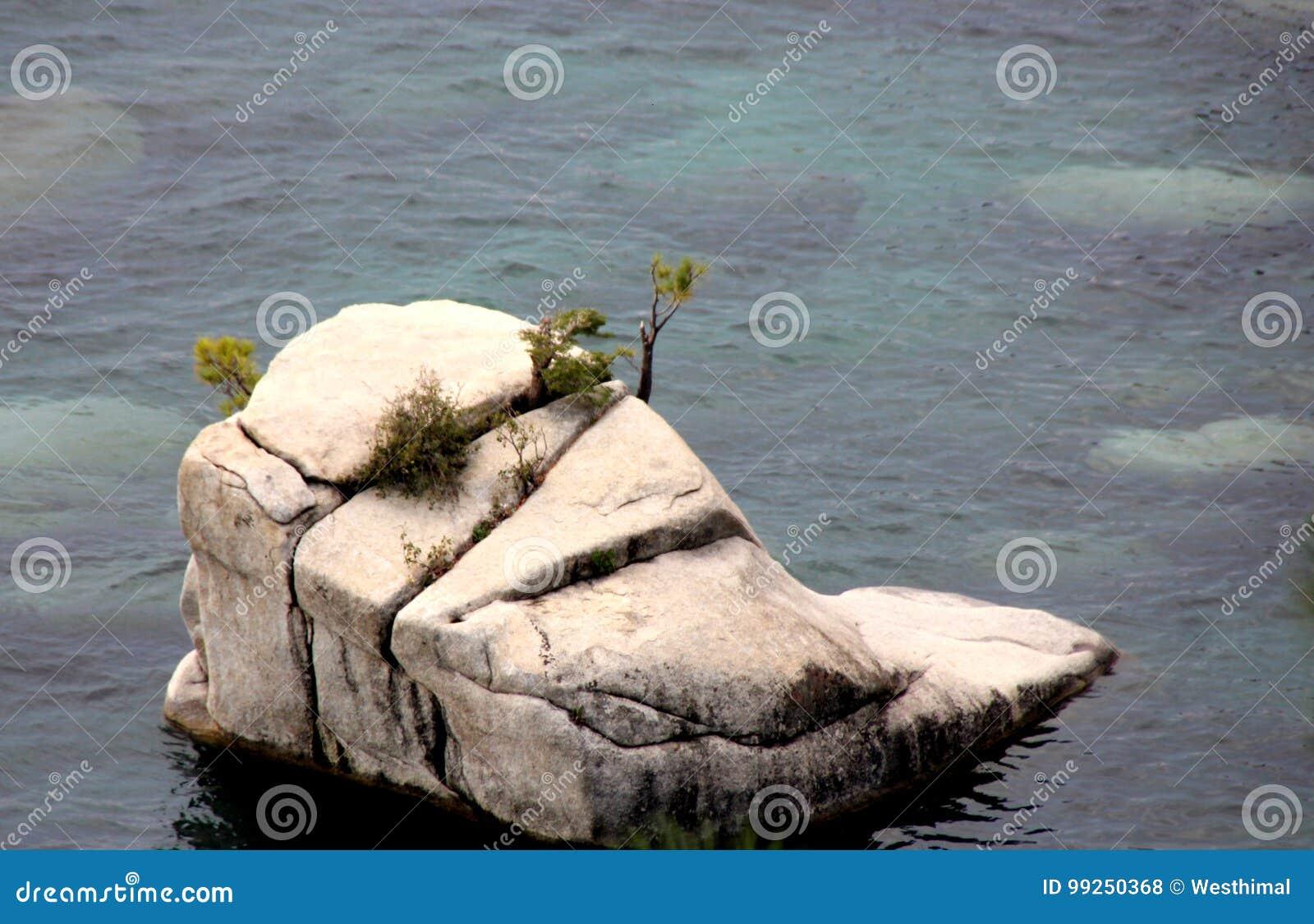 Bonsai rock, Tahoe lake, Nevada side, USA