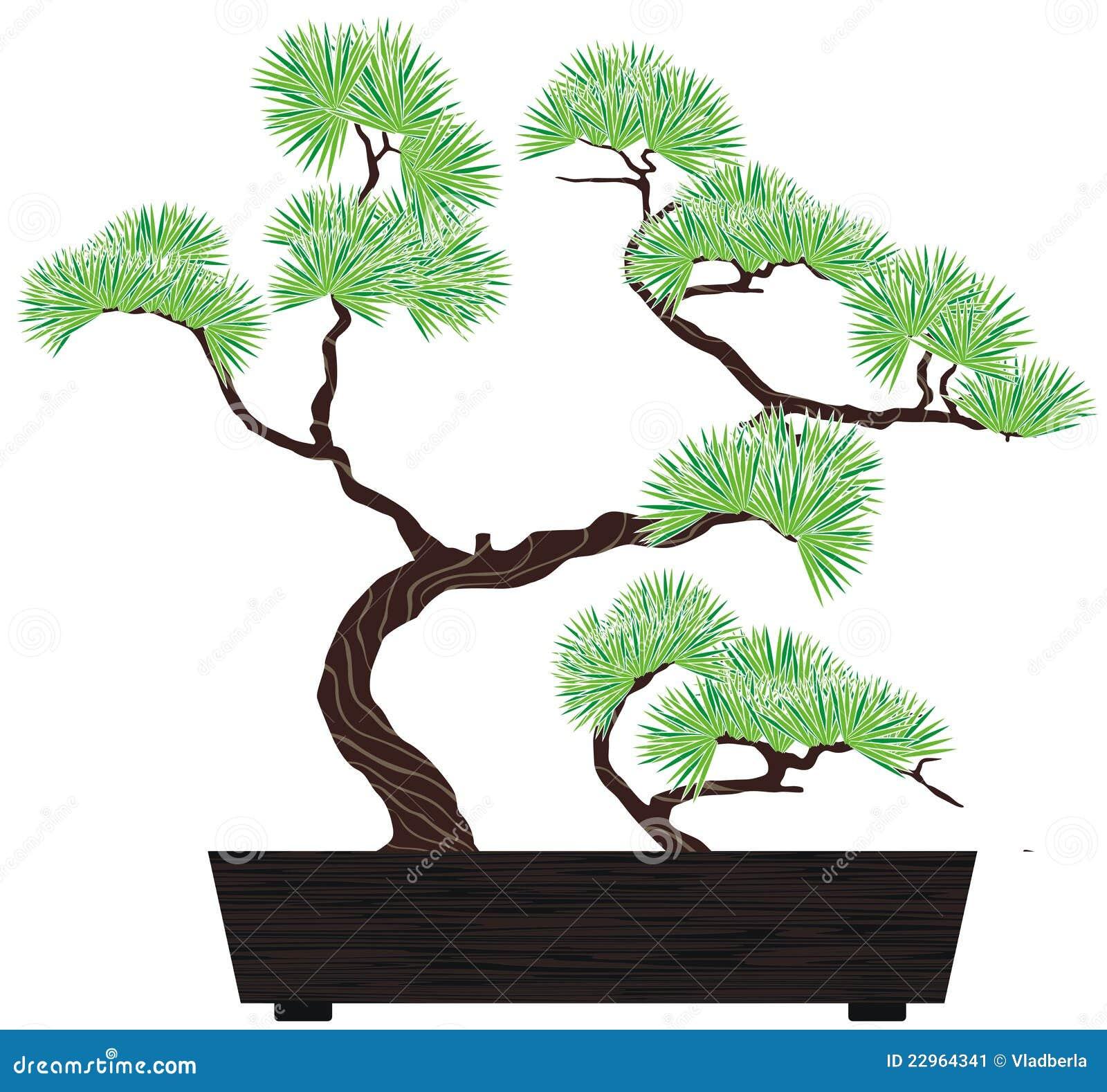 Bonsai tree pine stock vector. Image of needles, nature ... Bonsai Tree Clipart