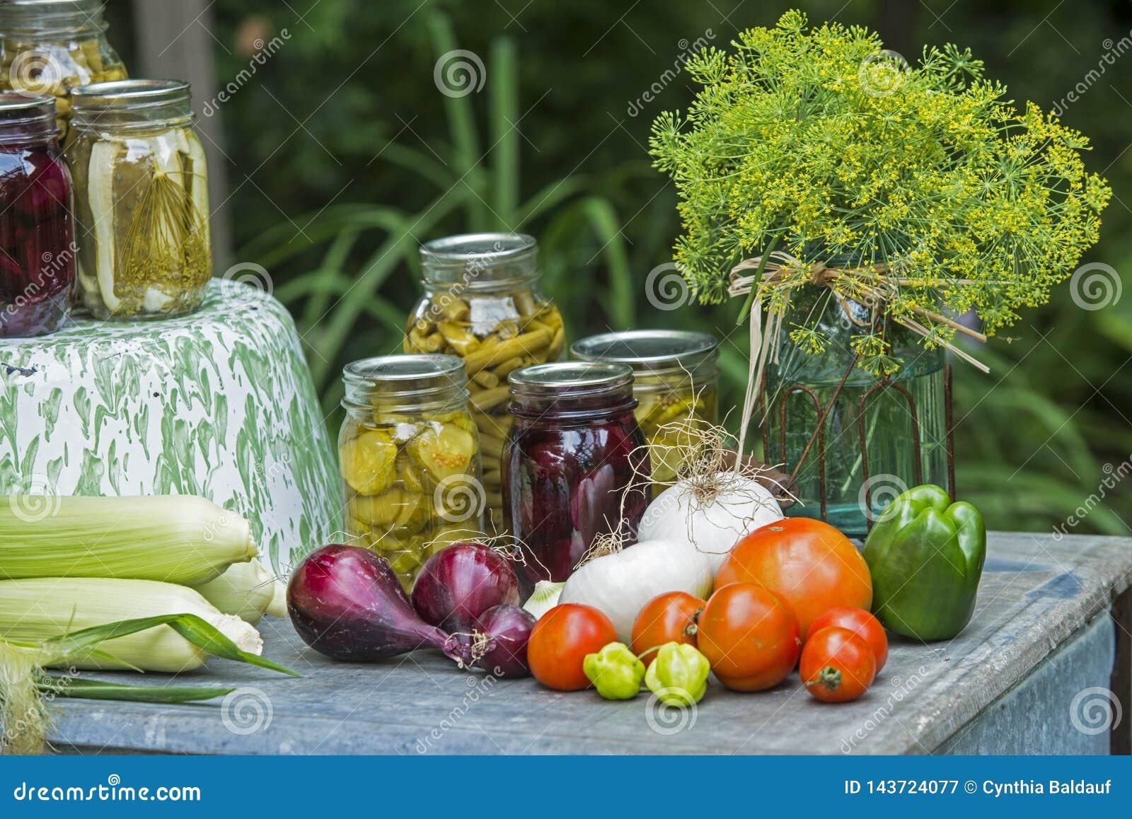Bontà delle verdure di estate dal giardino