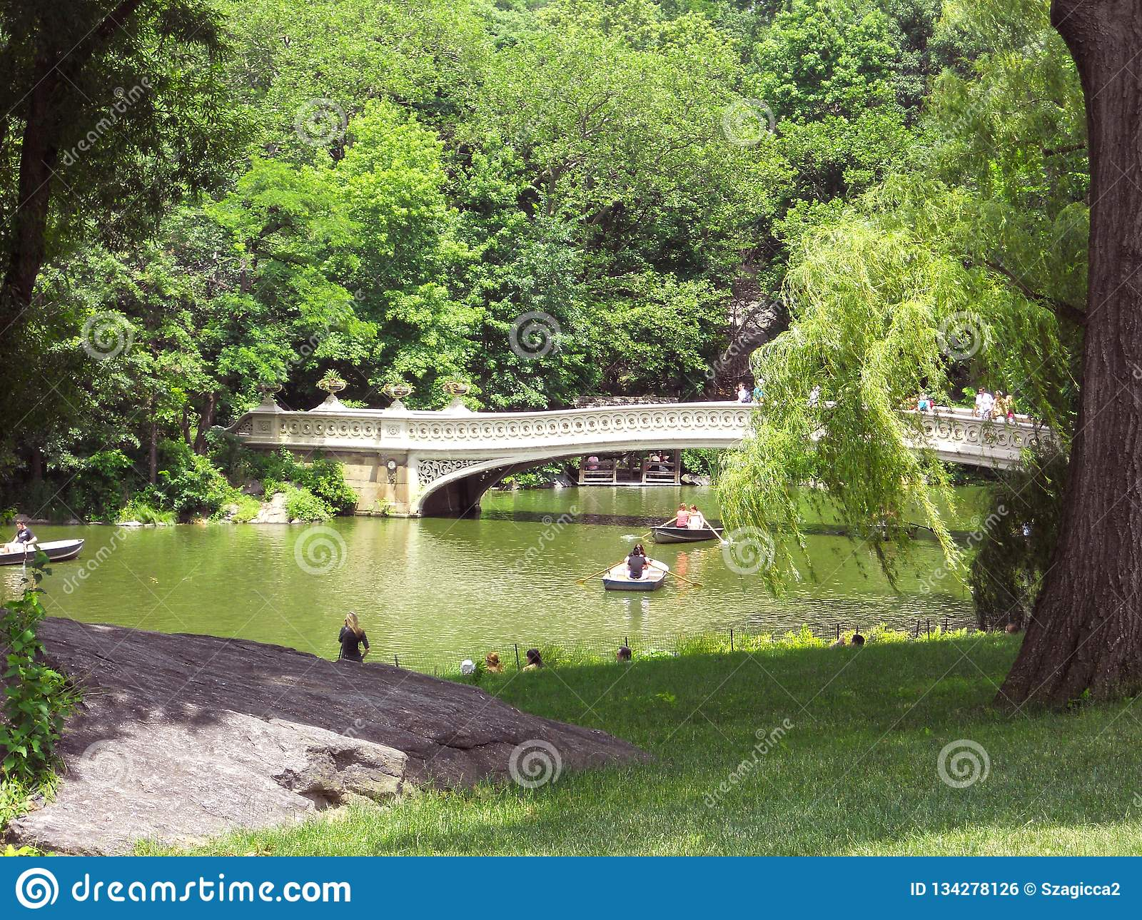 Boogbrug in Central Park, NYC