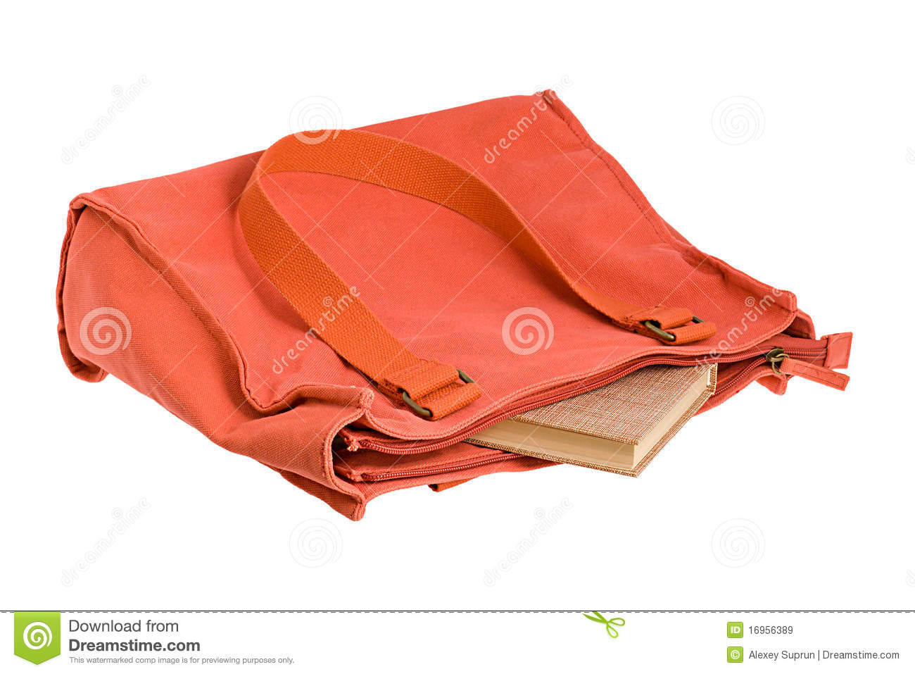 The Book Is In The Bag Royalty Free Stock Images - Image: 16956389
