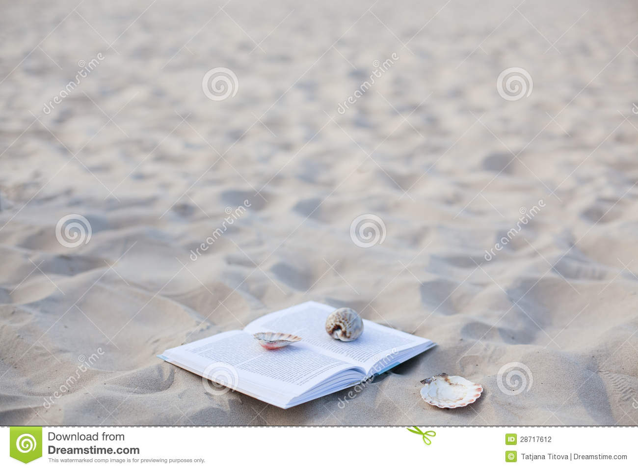 The book with cockleshells on white sea sand