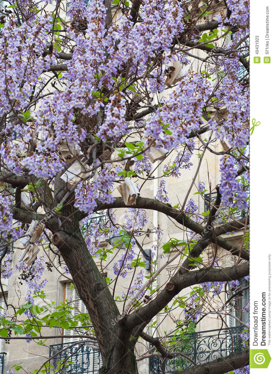 Book hang on tree with blue flowers france paris stock image book hang on tree with blue flowers france paris izmirmasajfo