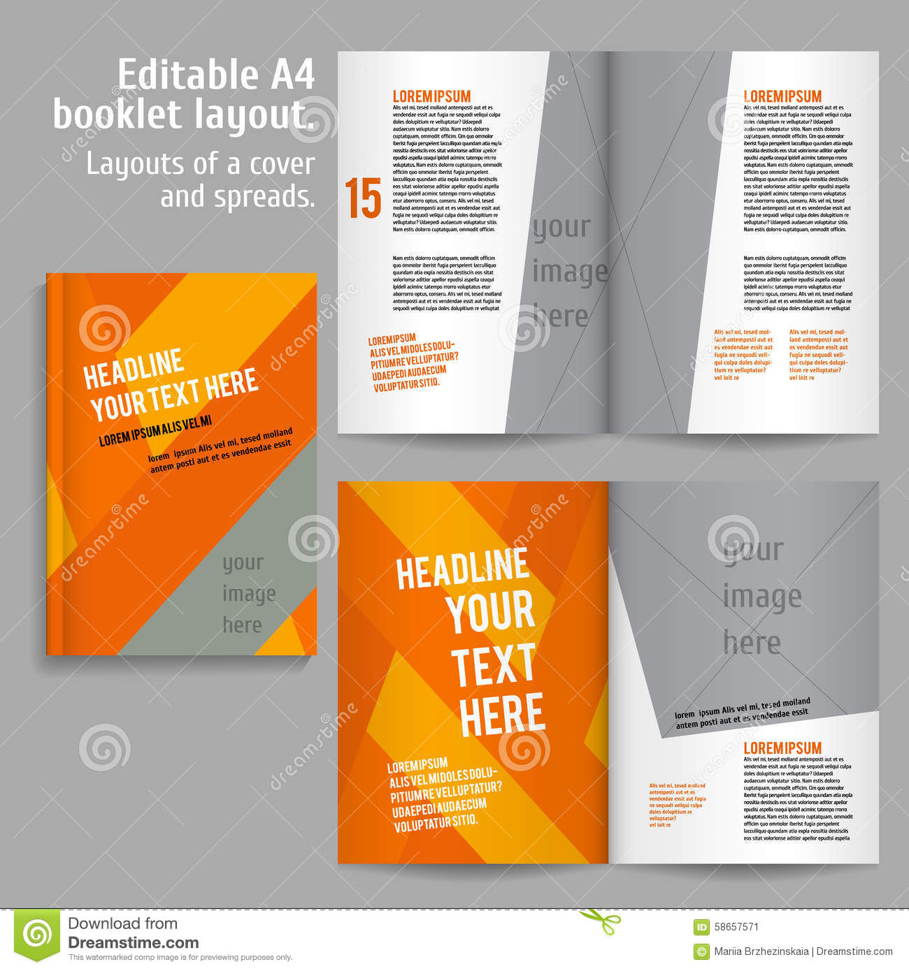 Book Cover Layout : A book layout design template stock vector image