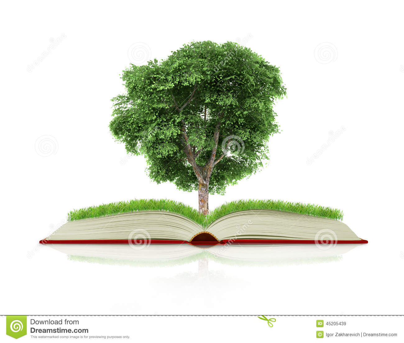 Book Of Nature With Grass And Tree Growth Stock Image ... Magic! Album Cover