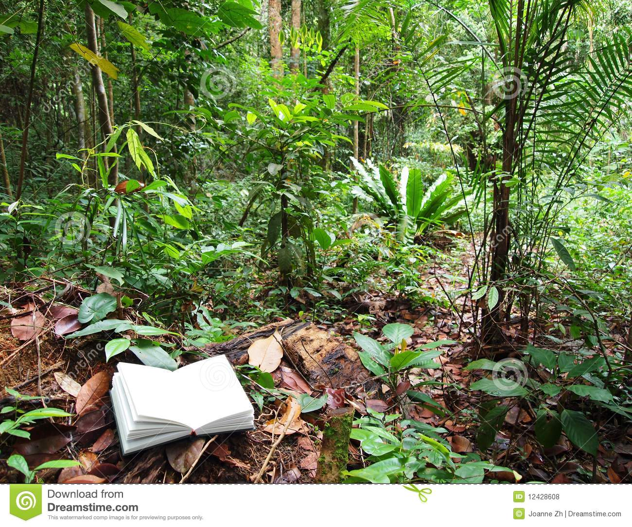book in tropical rainforest background stock photo image of
