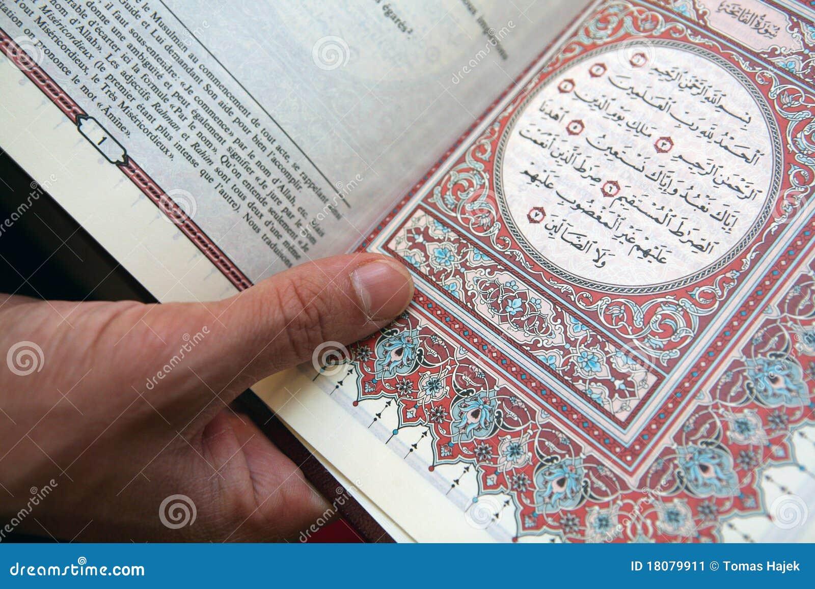 Bool islamico dell agrifoglio