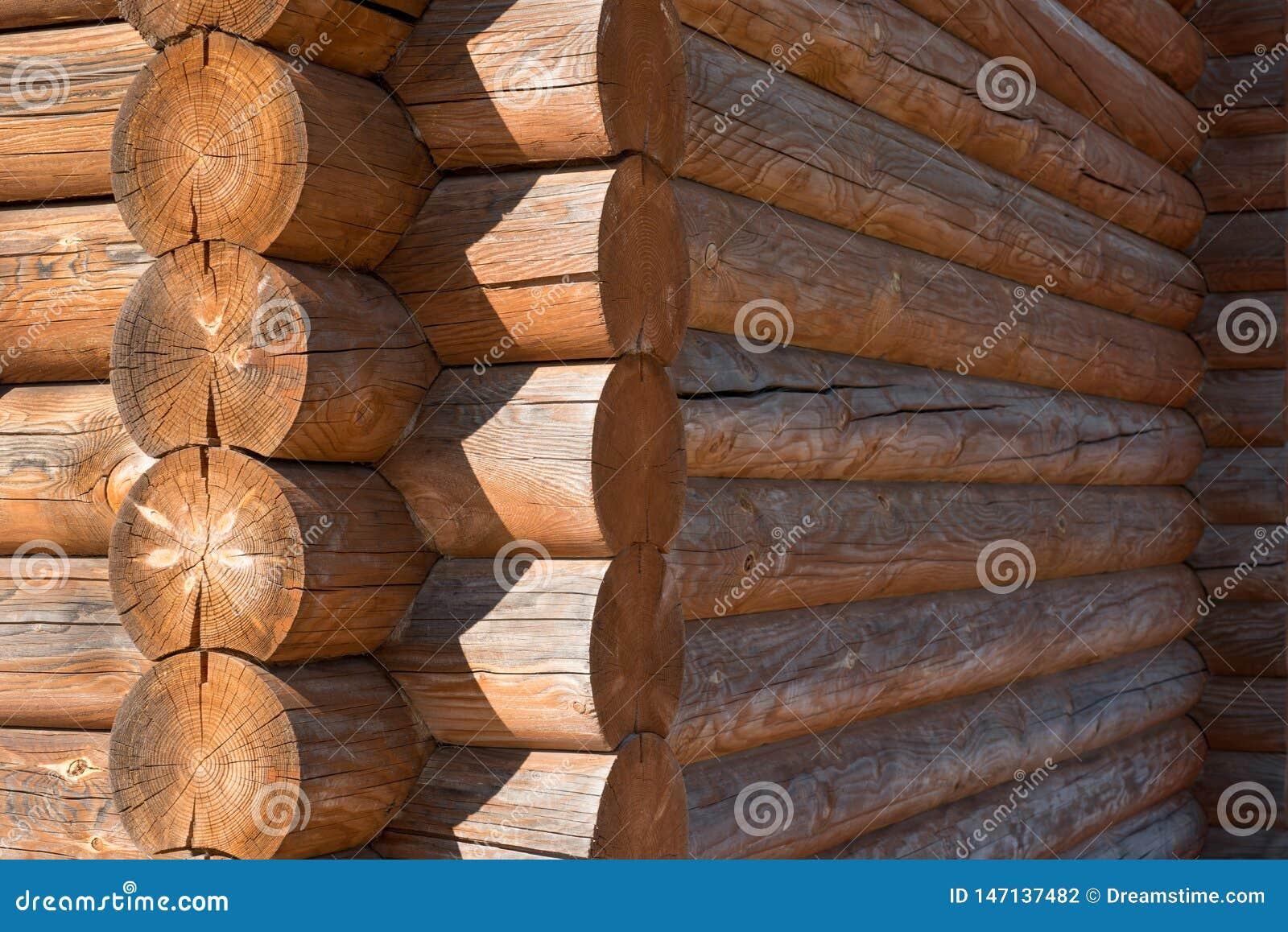 Boom, muur, ronde, hout, huis, bos