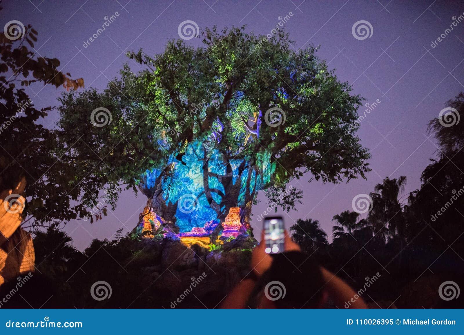 Boom van het Leven bij het Dierenrijk in Walt Disney World