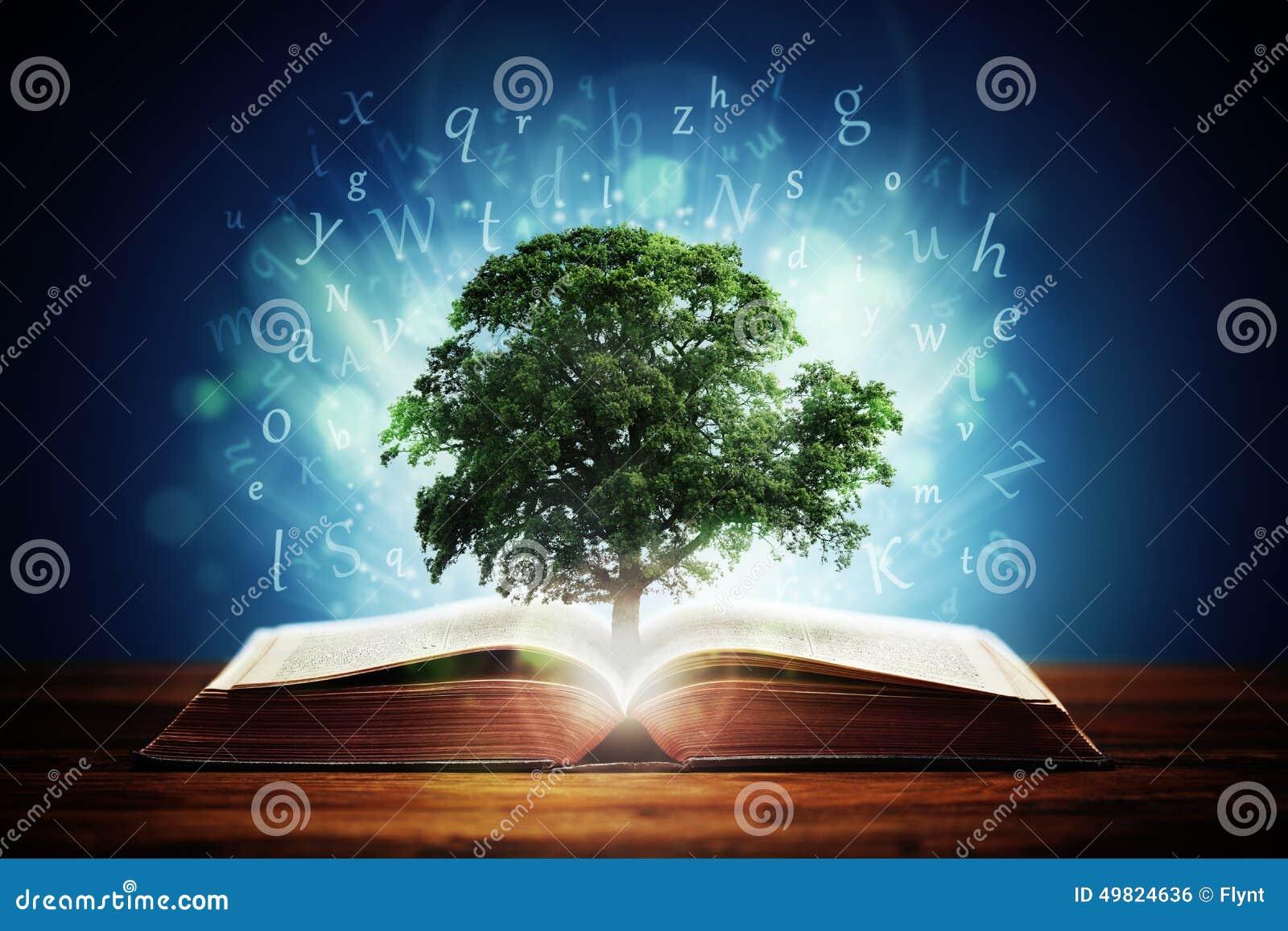 Boom van kennis
