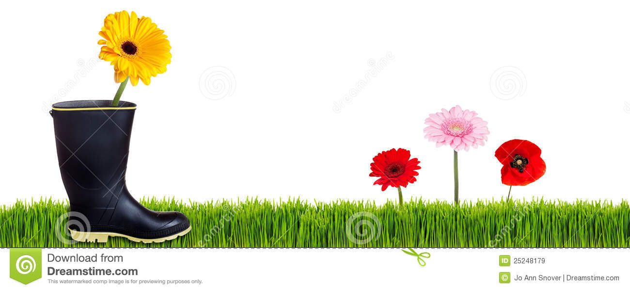 Boot In Garden Banner Stock Image Image Of Flowers Spring 25248179