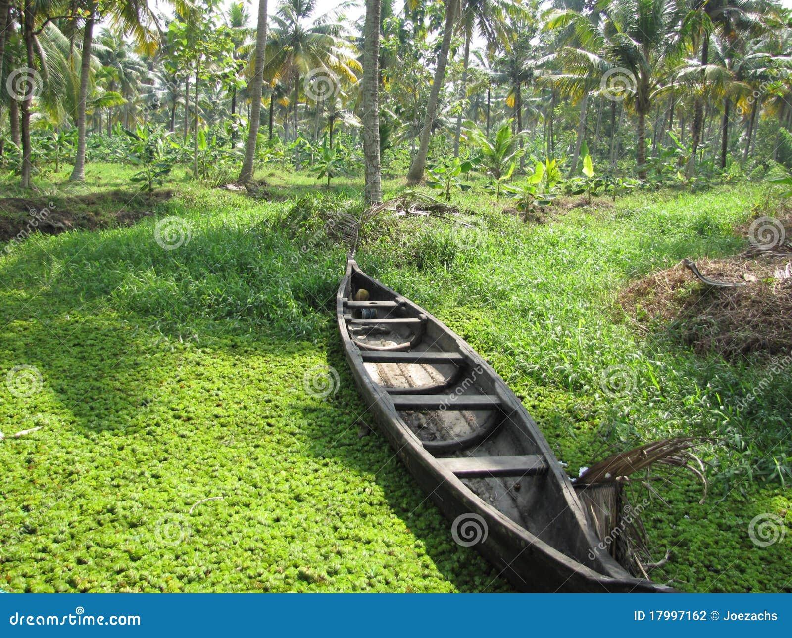 Een boot in het weelderige groen van de binnenwateren van kerala in