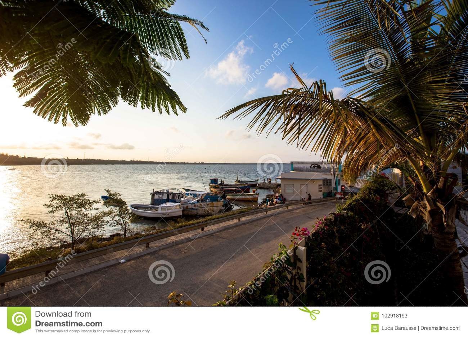 Boote machten auf tropischem Strand mit Palmen fest