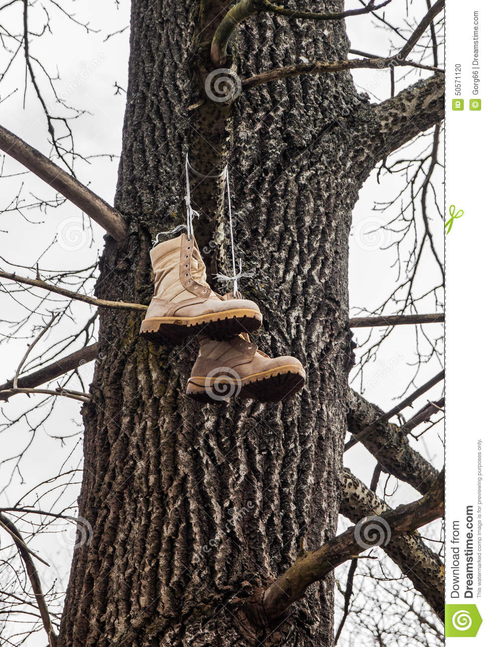 Vagabond S Boots Hanging On A Tree Stock Photo Image