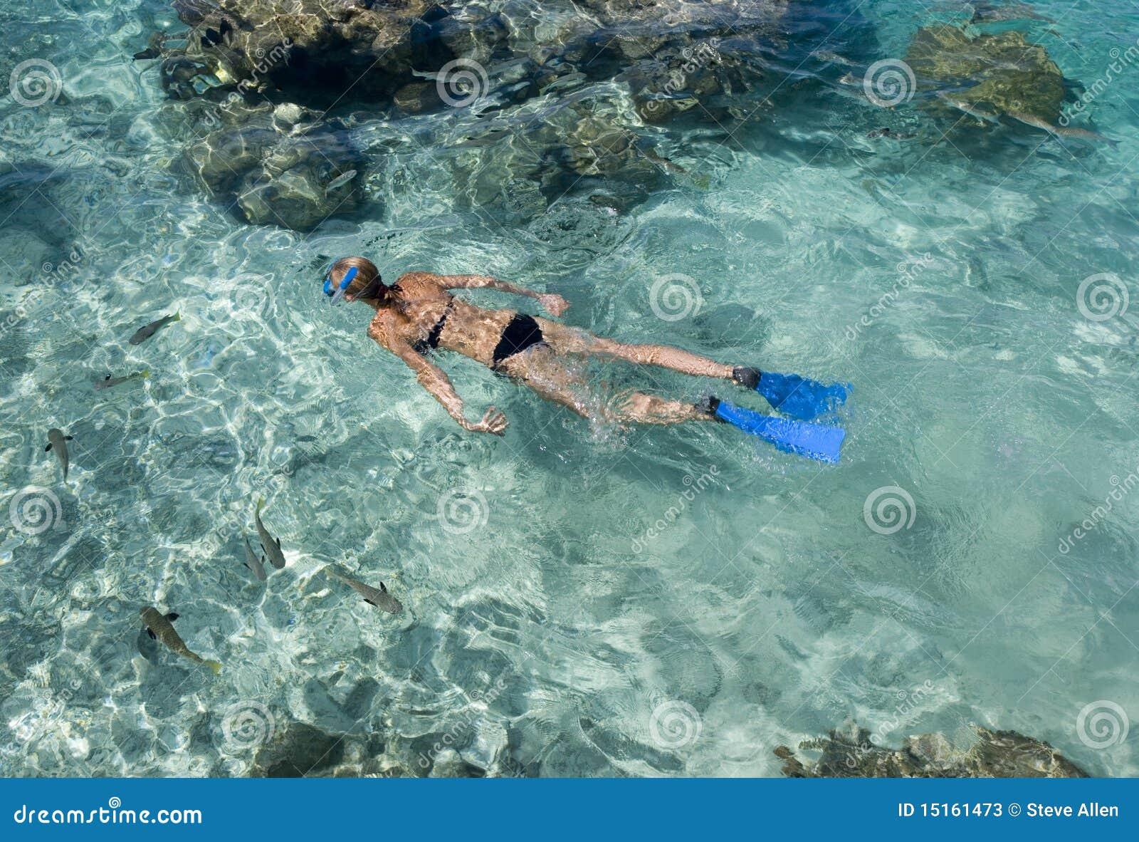 Bor laguny tropikalny