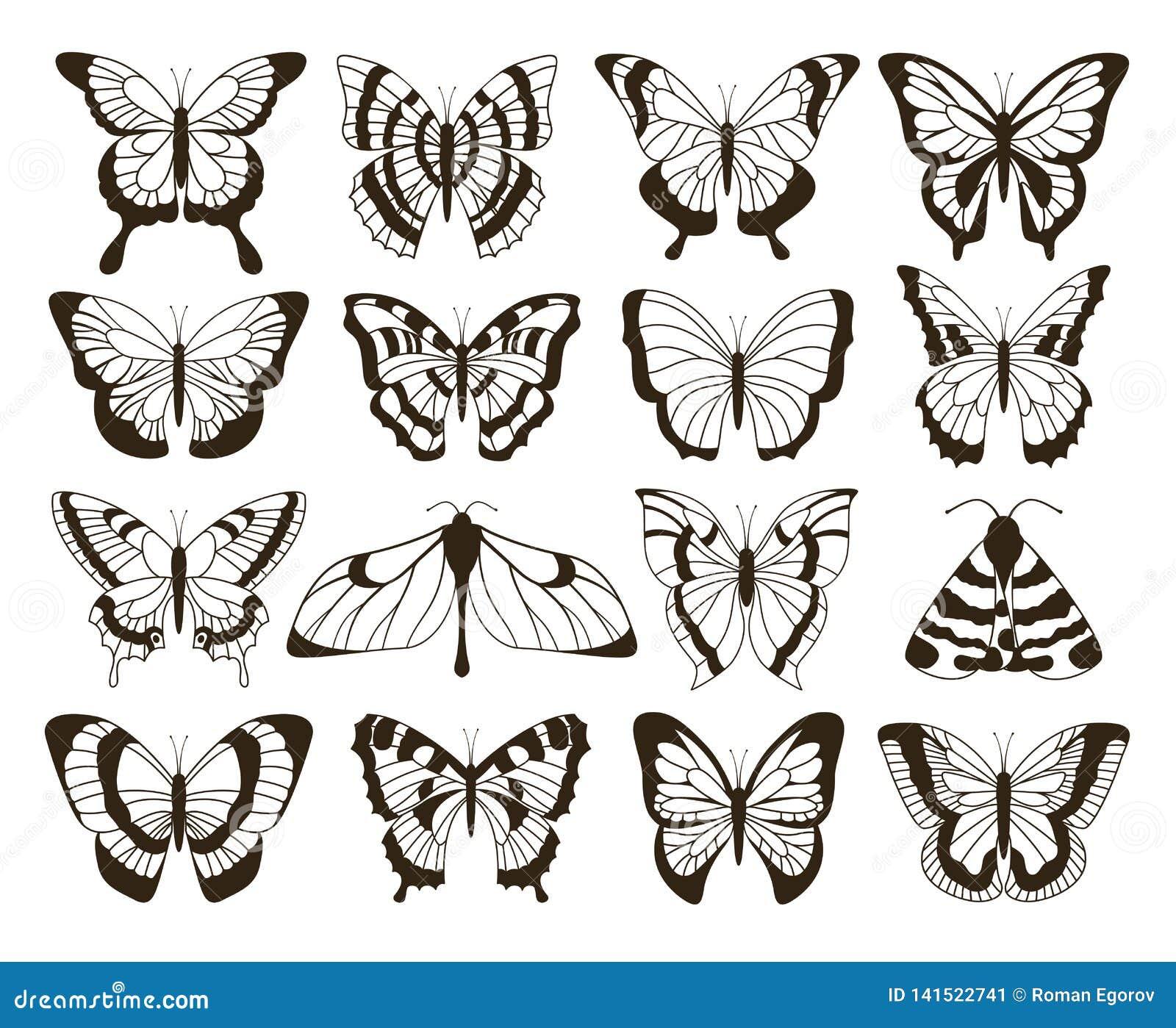 Borboletas monocromáticas Desenho preto e branco, coleção tirada mão do vintage das formas da tatuagem Borboleta do vetor isolada