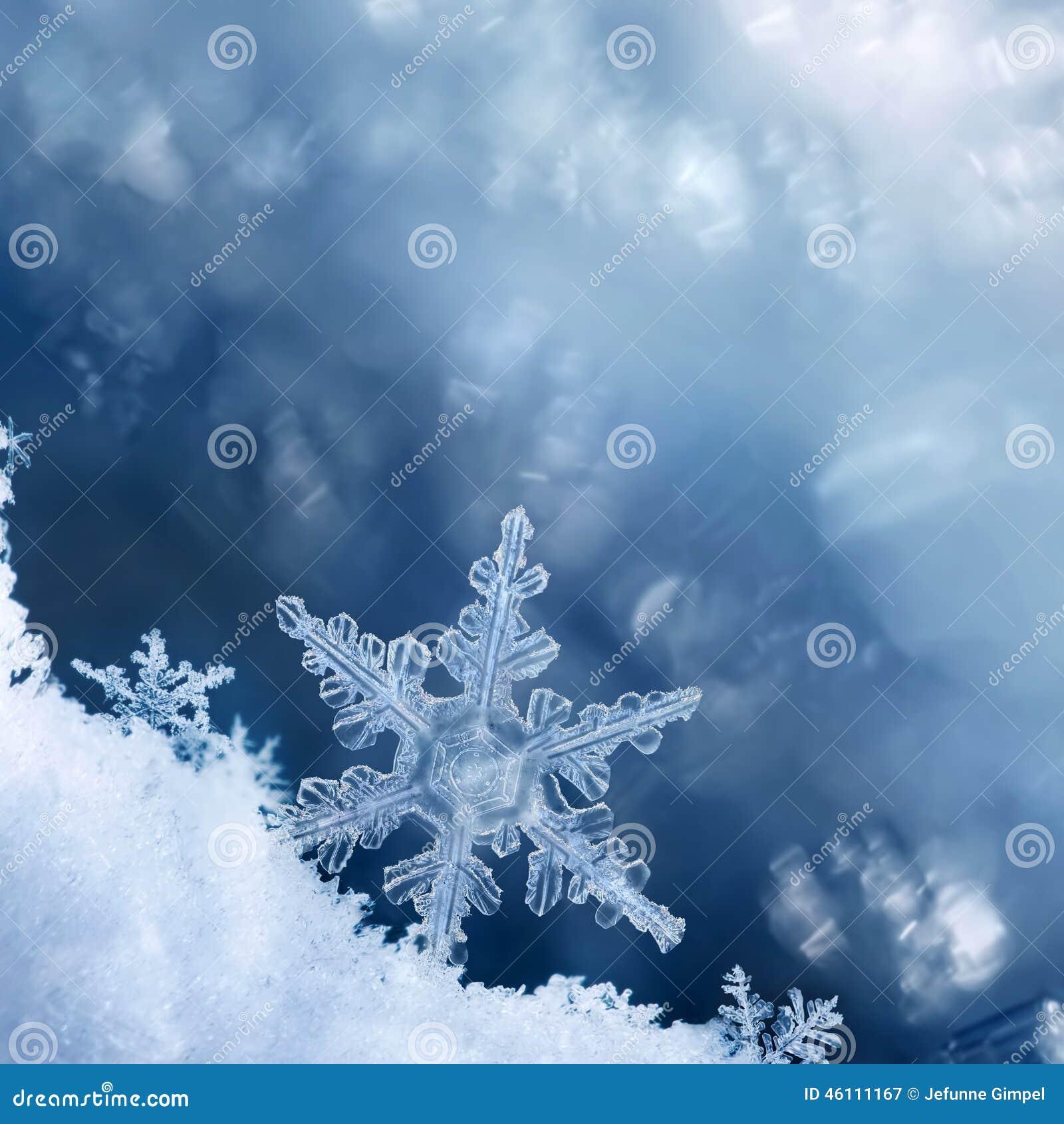 Bord de flocon de neige