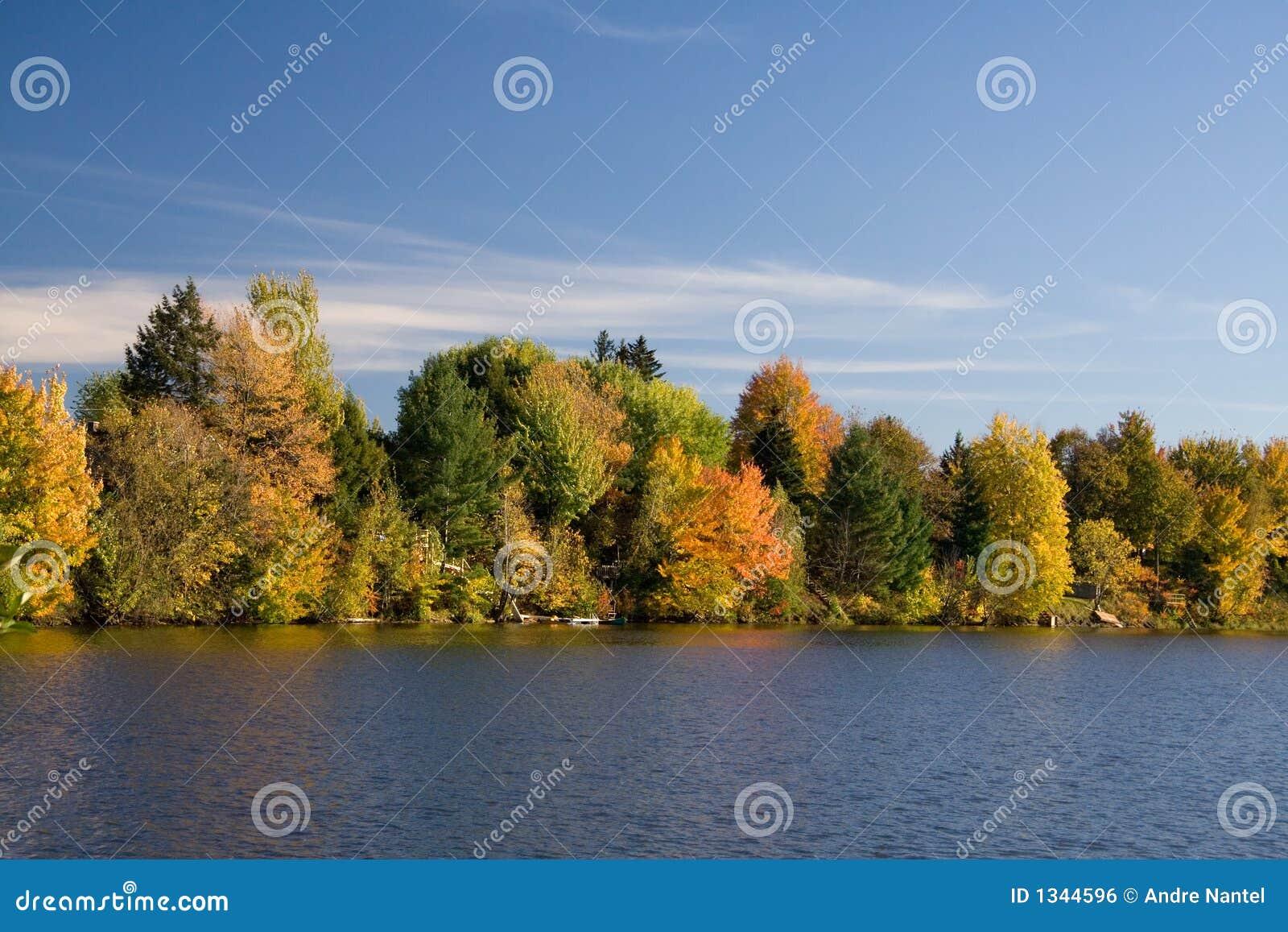 Bord du lac dans l automne