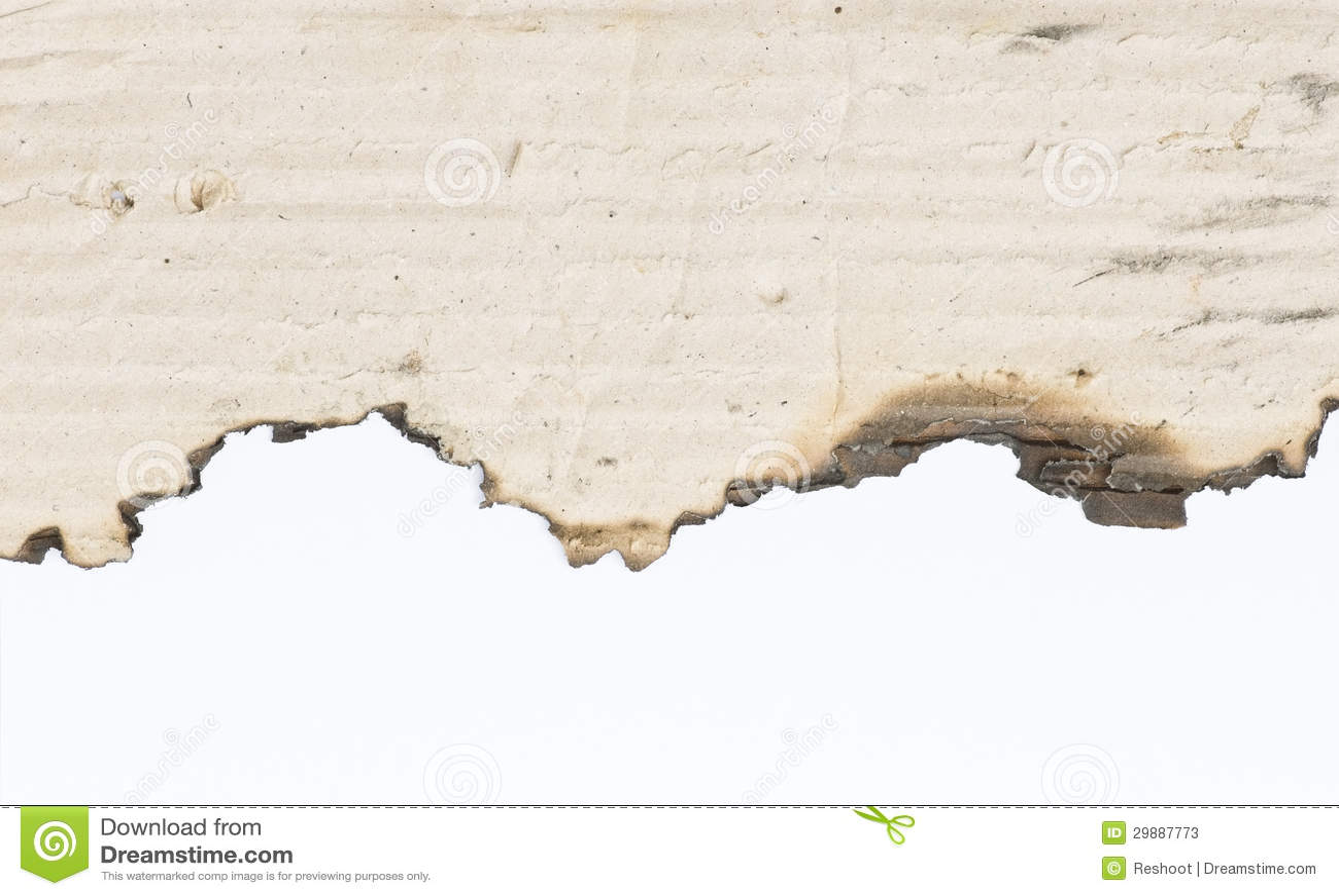 Borda da queimadura de papel