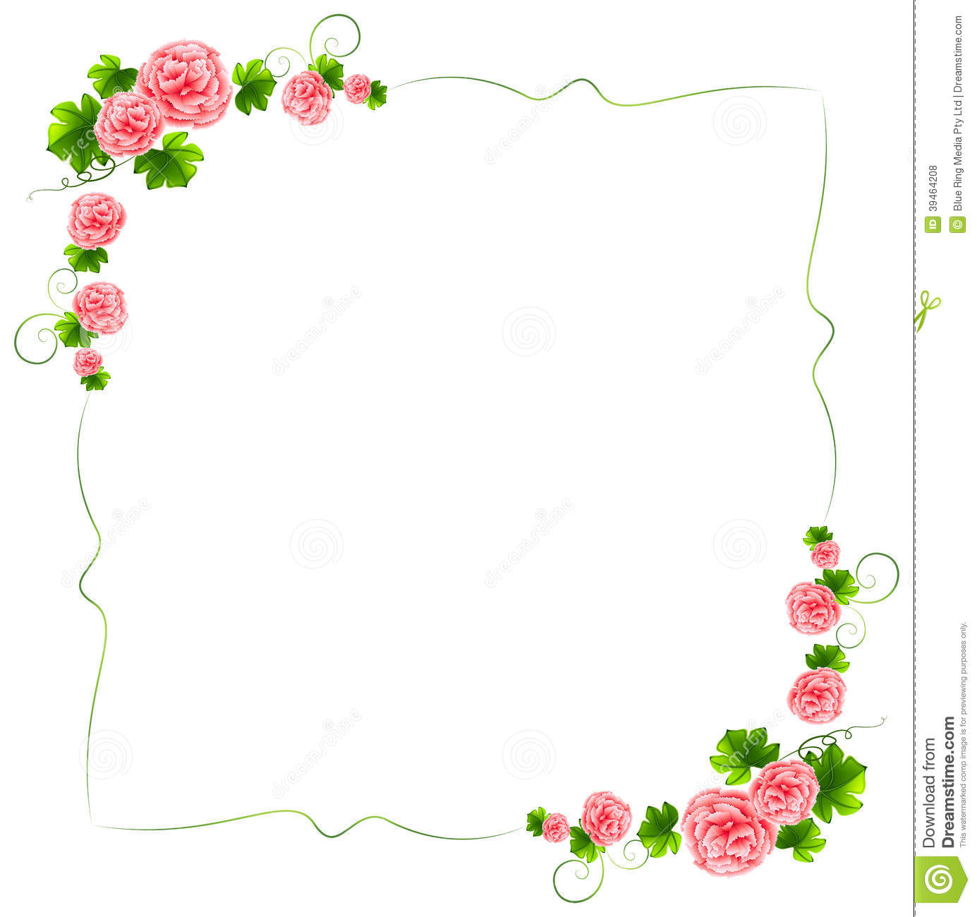 A Border With Carnation Pink Flowers Stock Vector