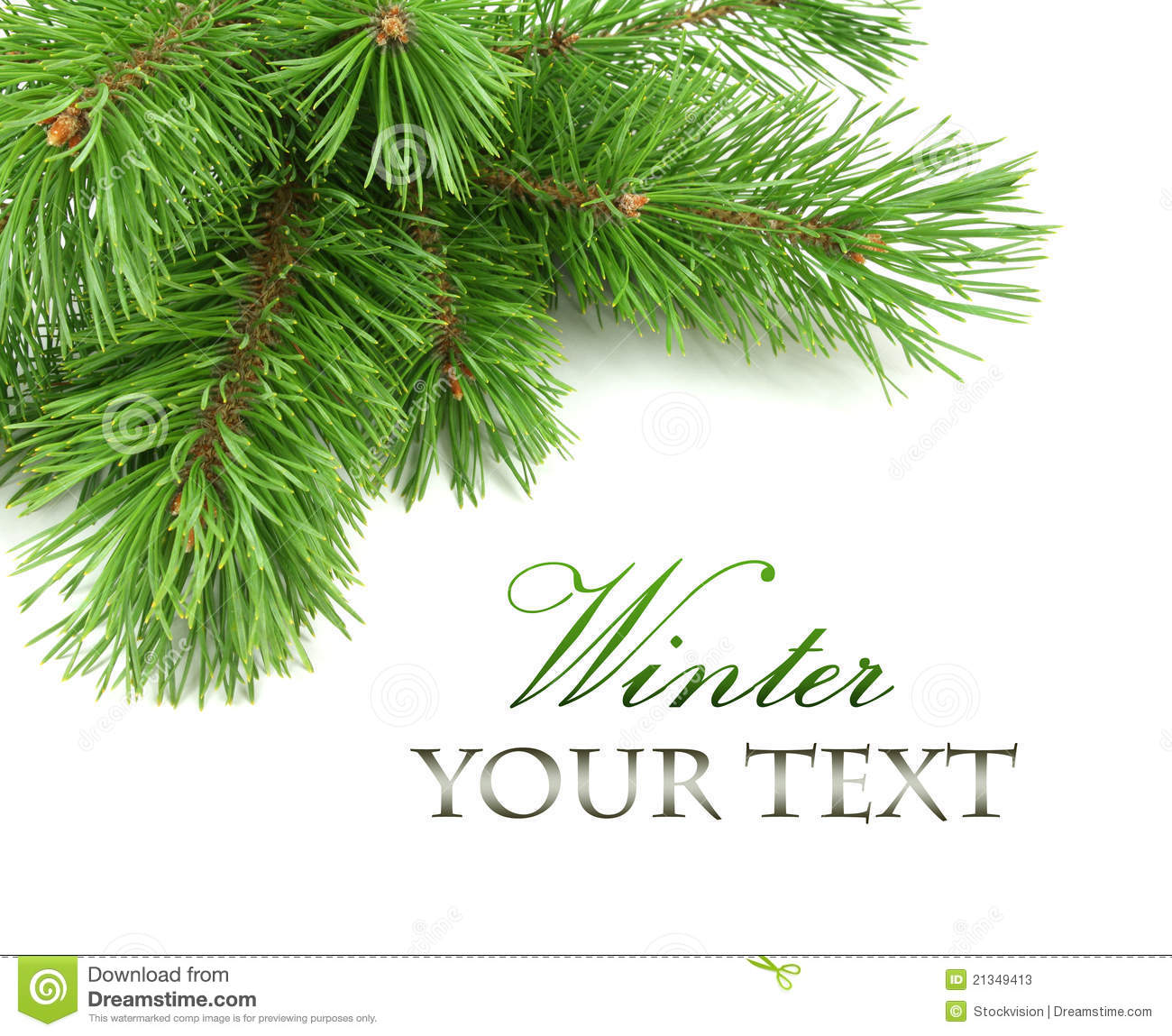 Border Of Christmas Tree Branches Stock Photos - Image: 21349413