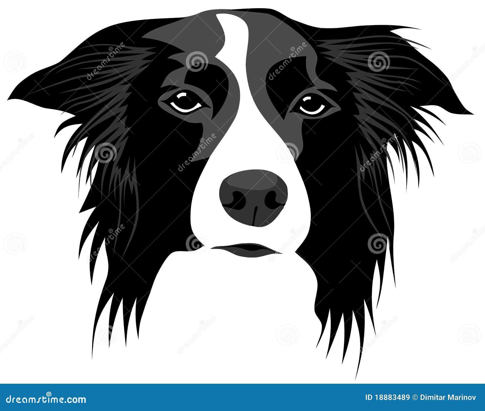 border collie stock illustrations 405 border collie stock rh dreamstime com cartoon border collie clipart Dog Clip Art
