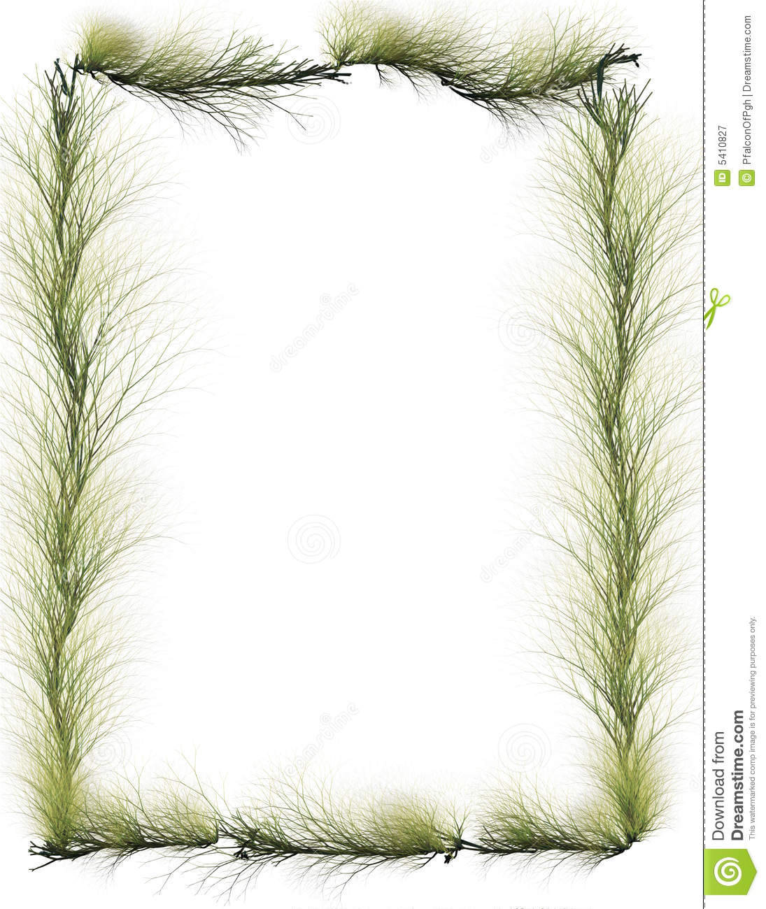 Border: Evergreen Branches Royalty Free Stock Photography - Image ...