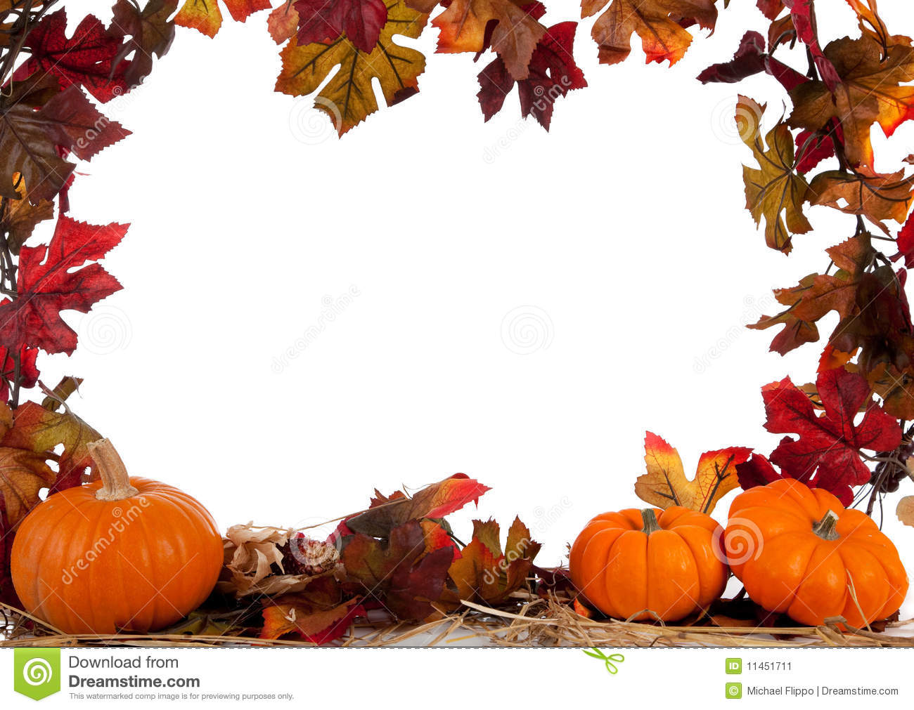 Border Of Pumpkins On Hay On White Stock Image Image Of