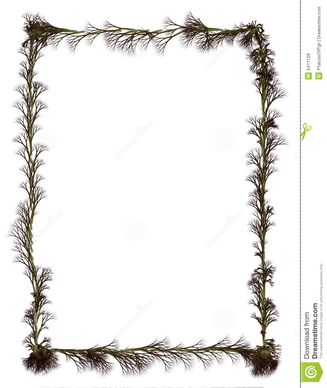 Border: Roots Royalty Free Stock Images Image: 5411129