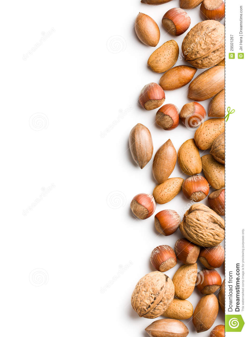 Free Clipart Nuts