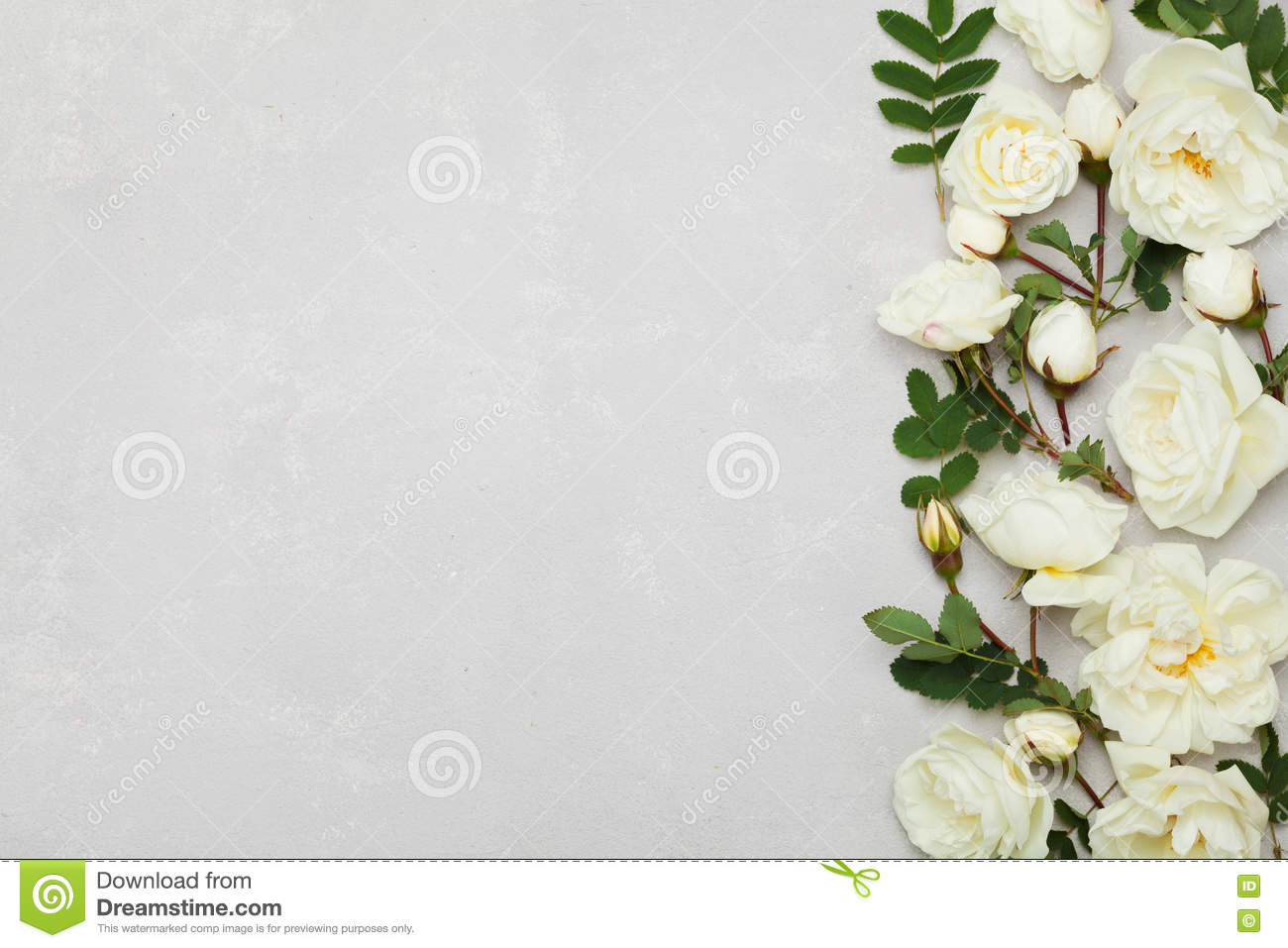 Green and white floral pattern - photo#35