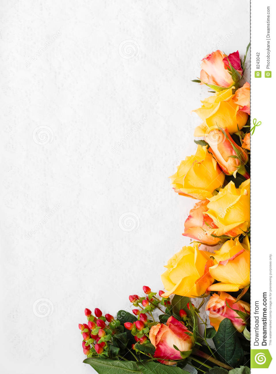 border of yellow roses stock photo image of detail roses