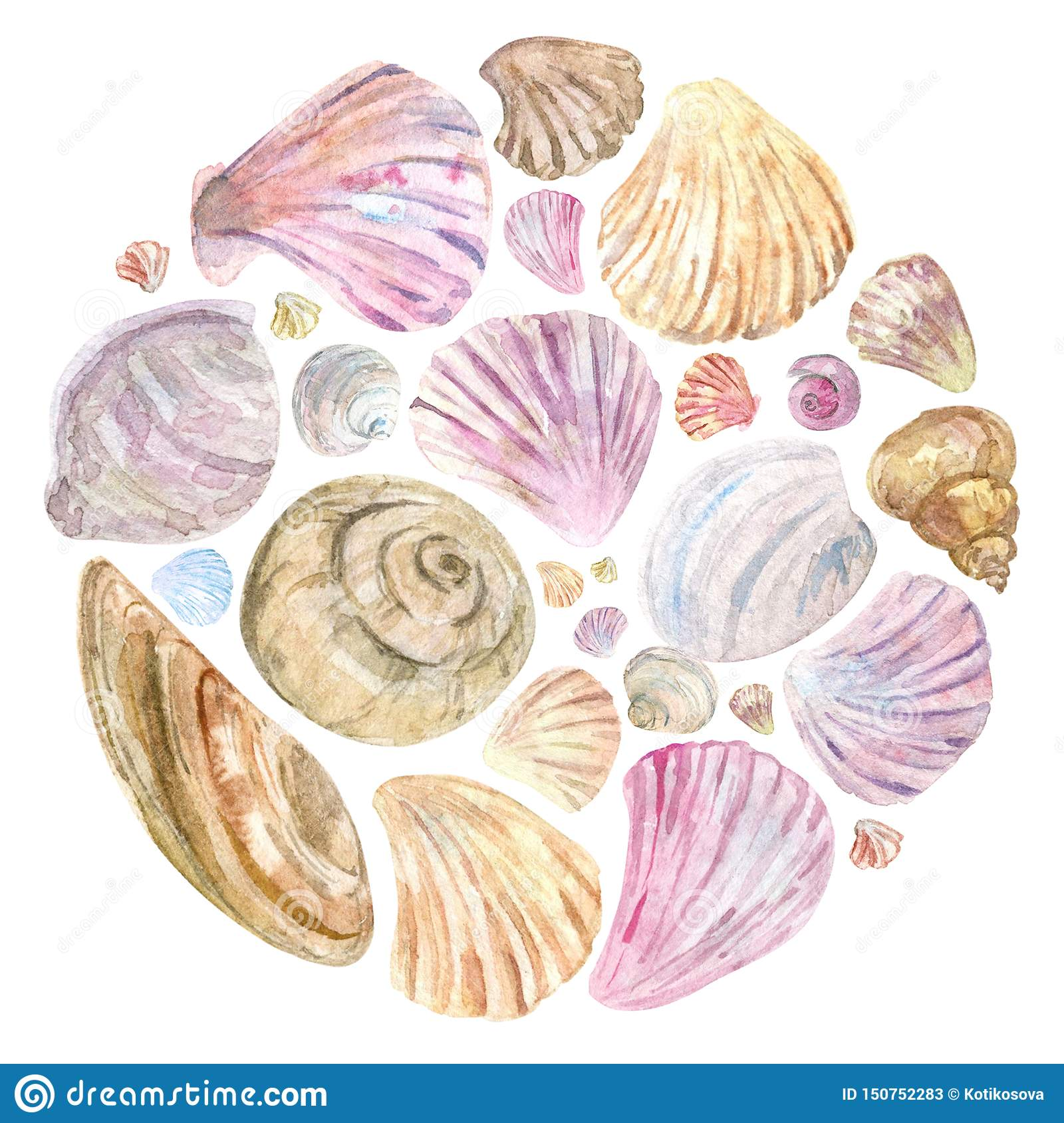 Colorful watercolor shells in round composition