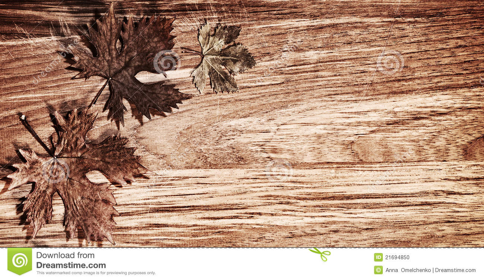 Bordo dei fogli di autunno sopra priorità bassa di legno
