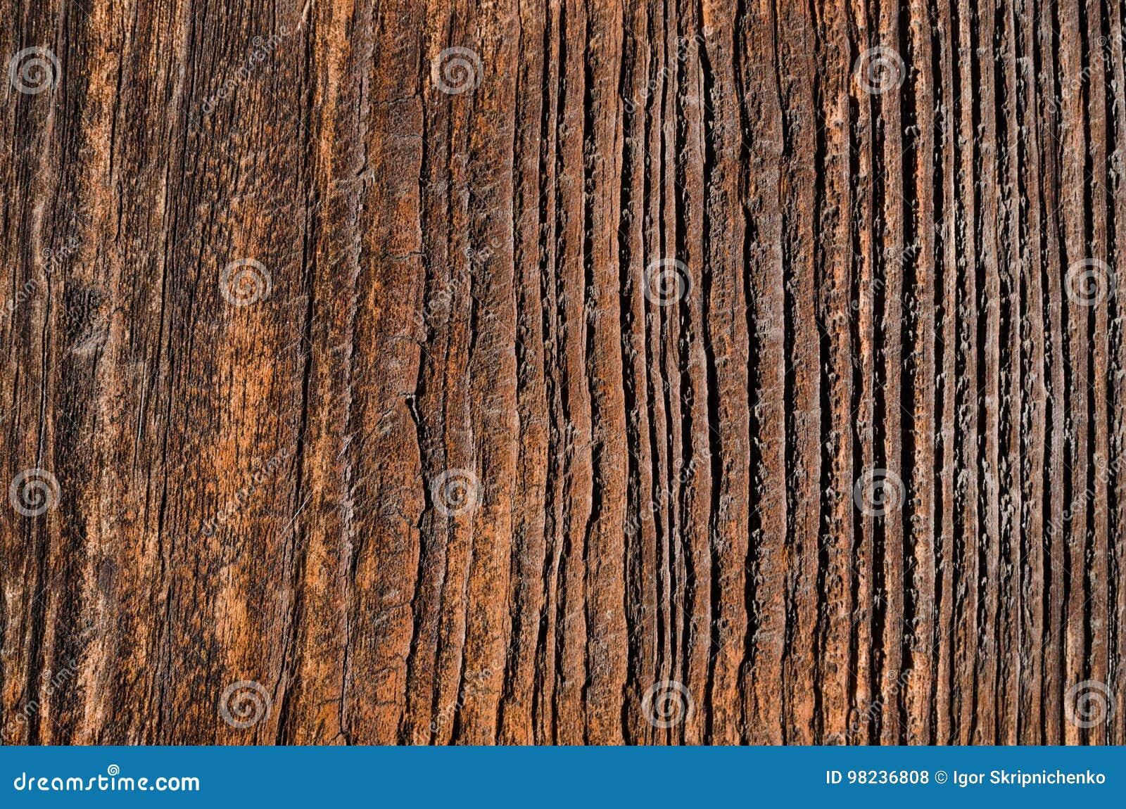 Bordo di legno utdated con sbiadire i fungino e le cavità di malattia