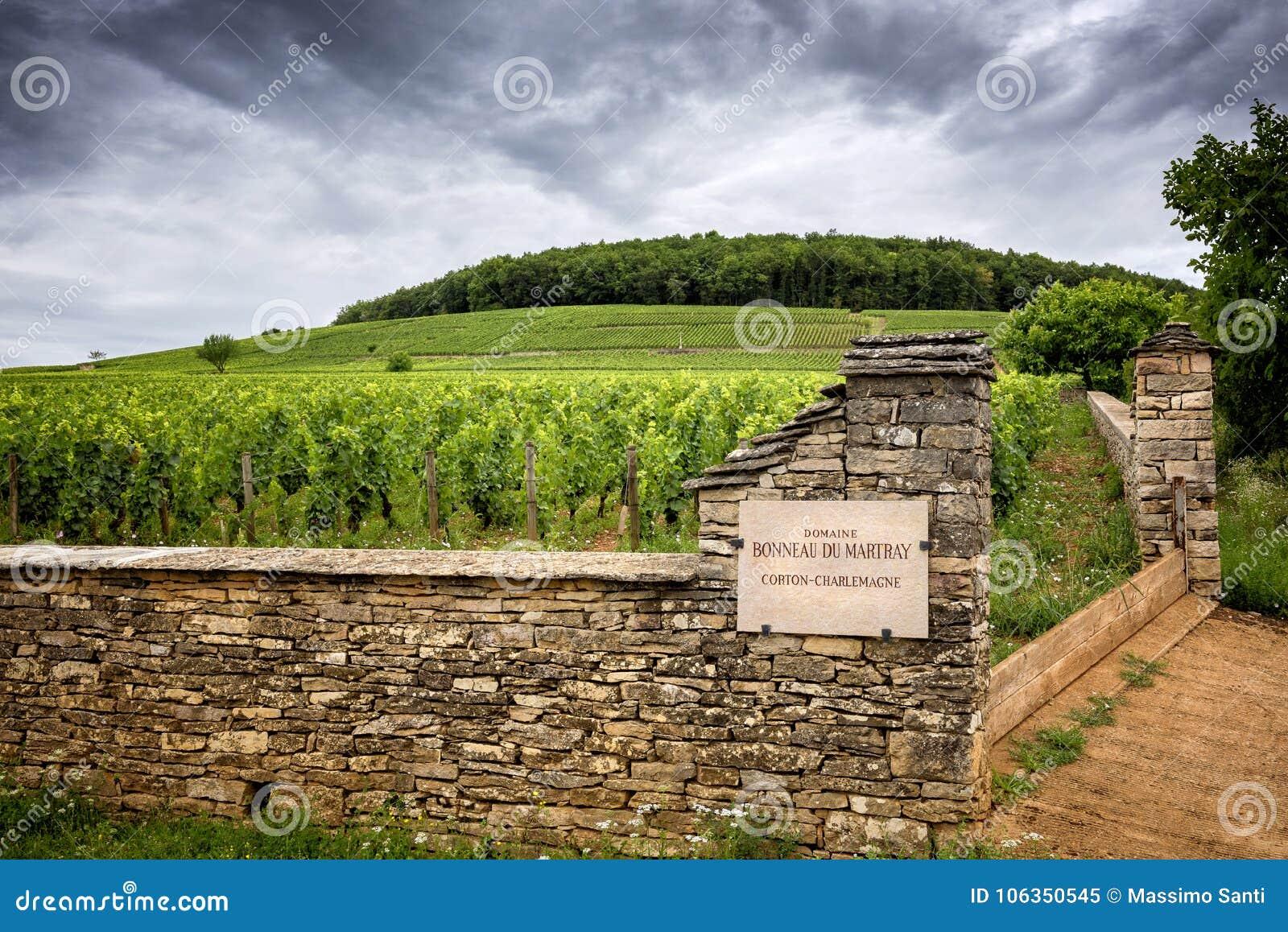 Borgonha Corton-Charlemagne é a denominação grande de Cru para os vinhos brancos do monte de Montagne de Corton, França