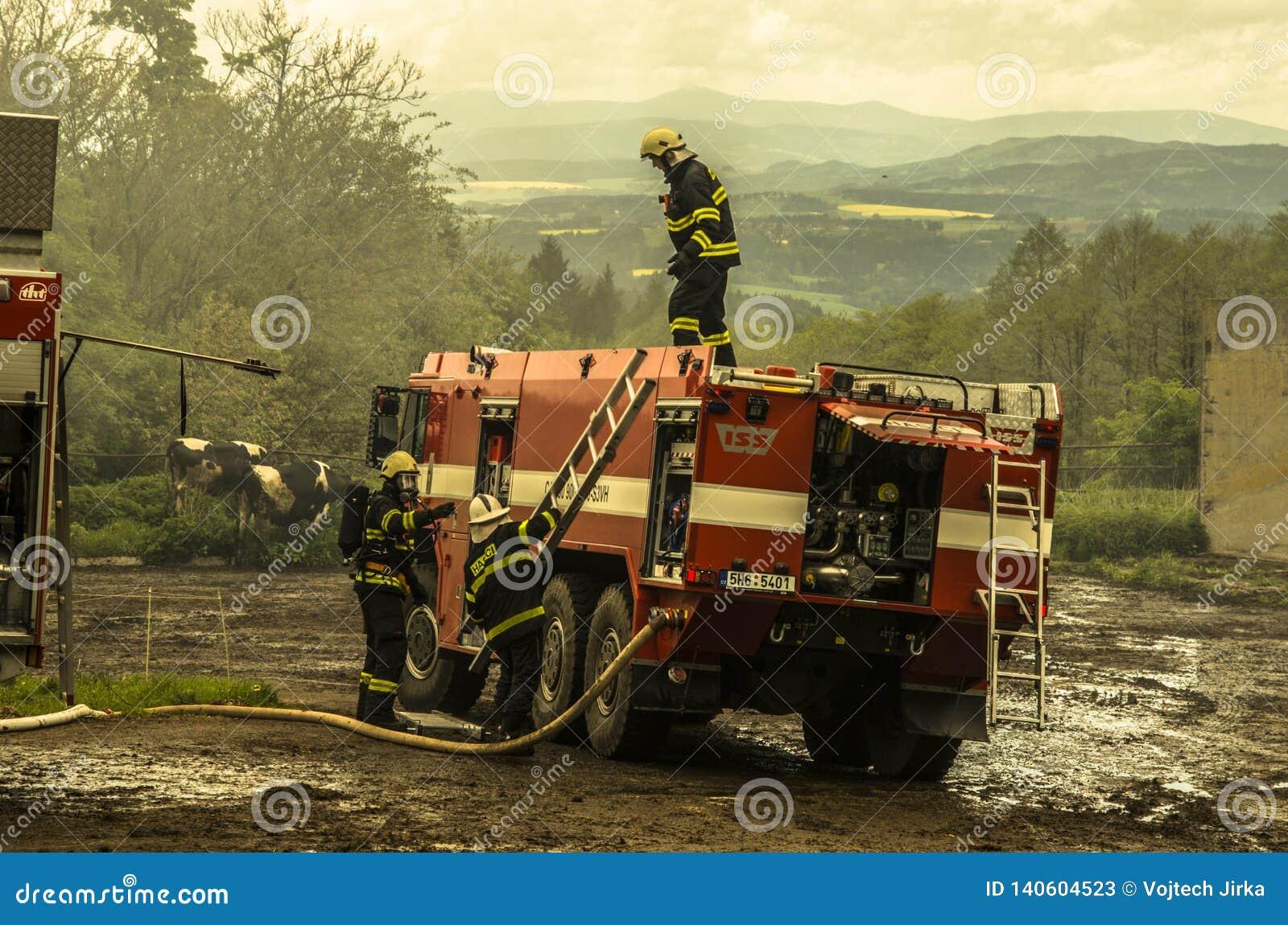Borova, Czechia - 11 mai 2014 sapeurs-pompiers sauvant des bétail d une grange qui est sur le feu