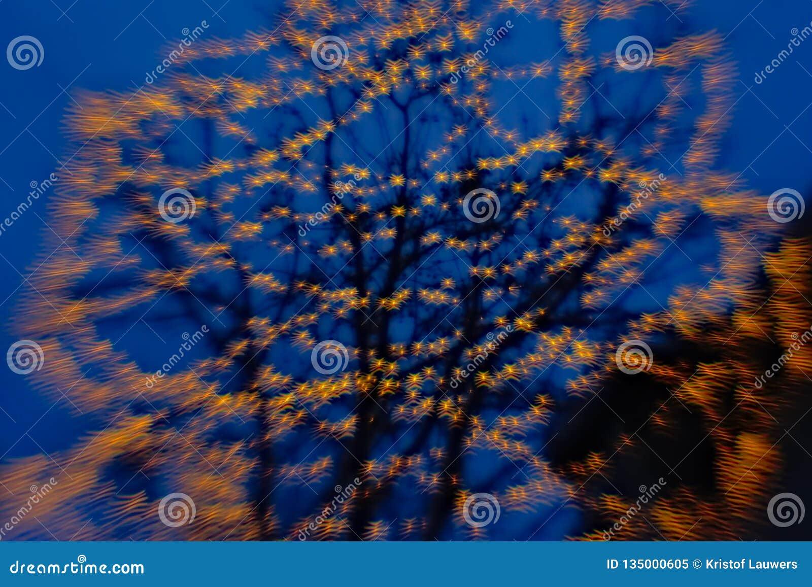 Borrão do fundo da árvore com luzes do bokeh em formas onduladas