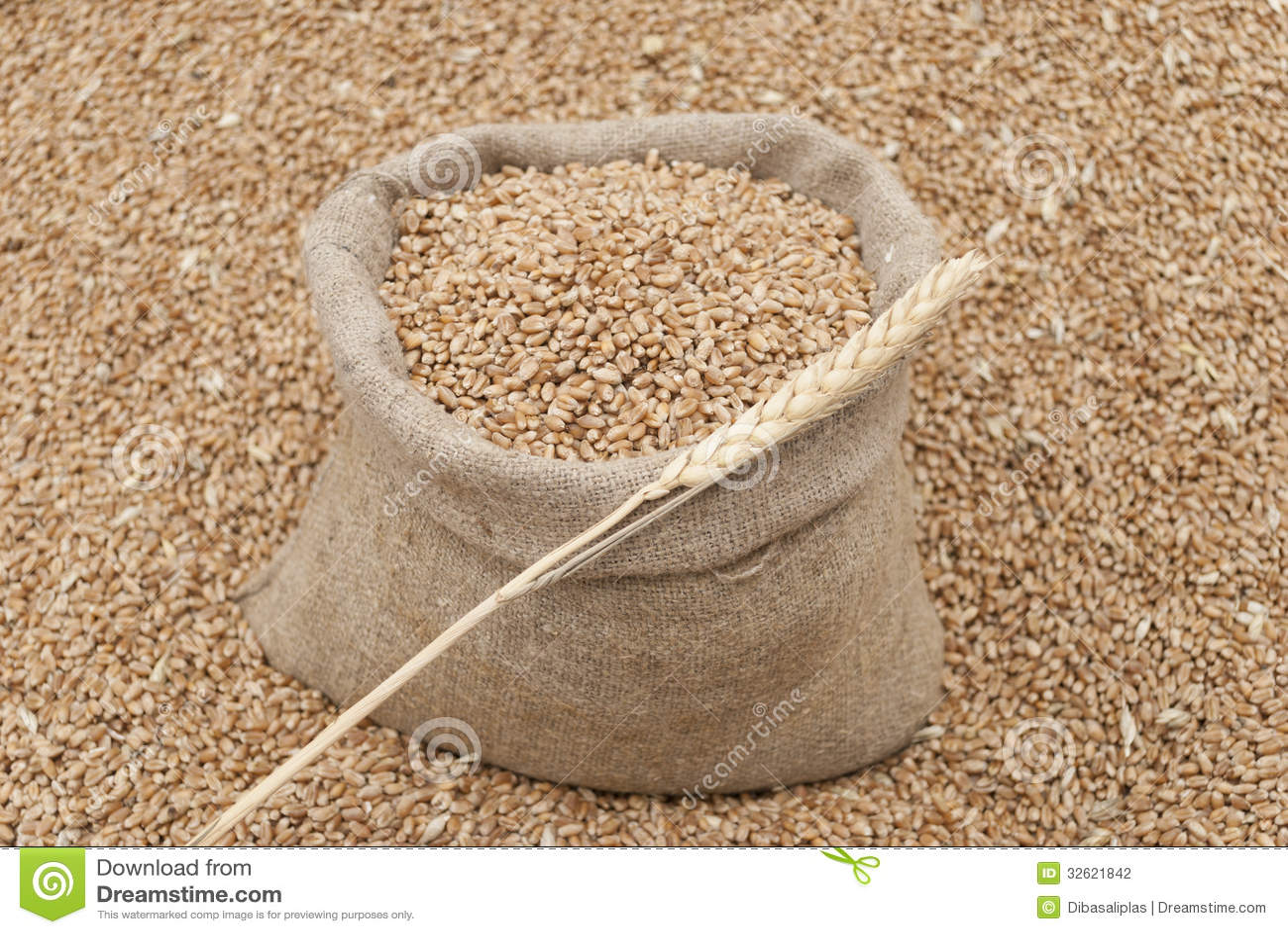 Borsa di grano.