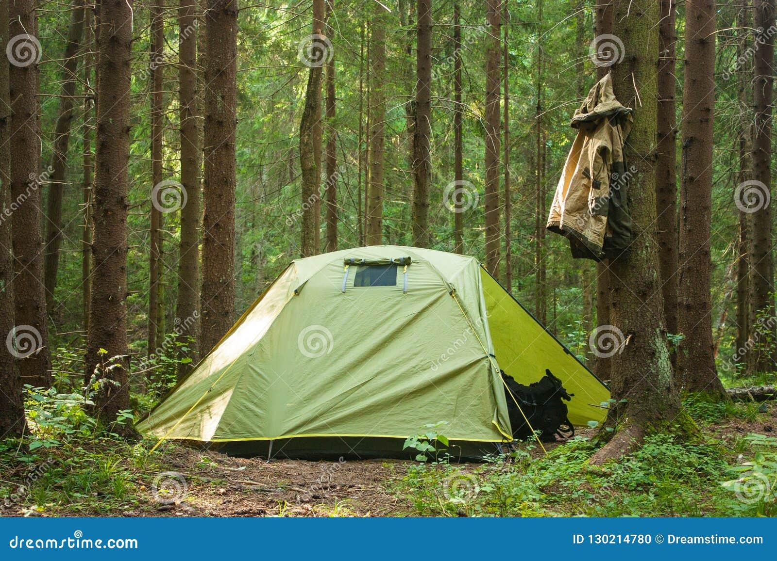 Borsa verde di viaggio di Forest Nature Sun Happy Trip di estate dell albero di Kamping