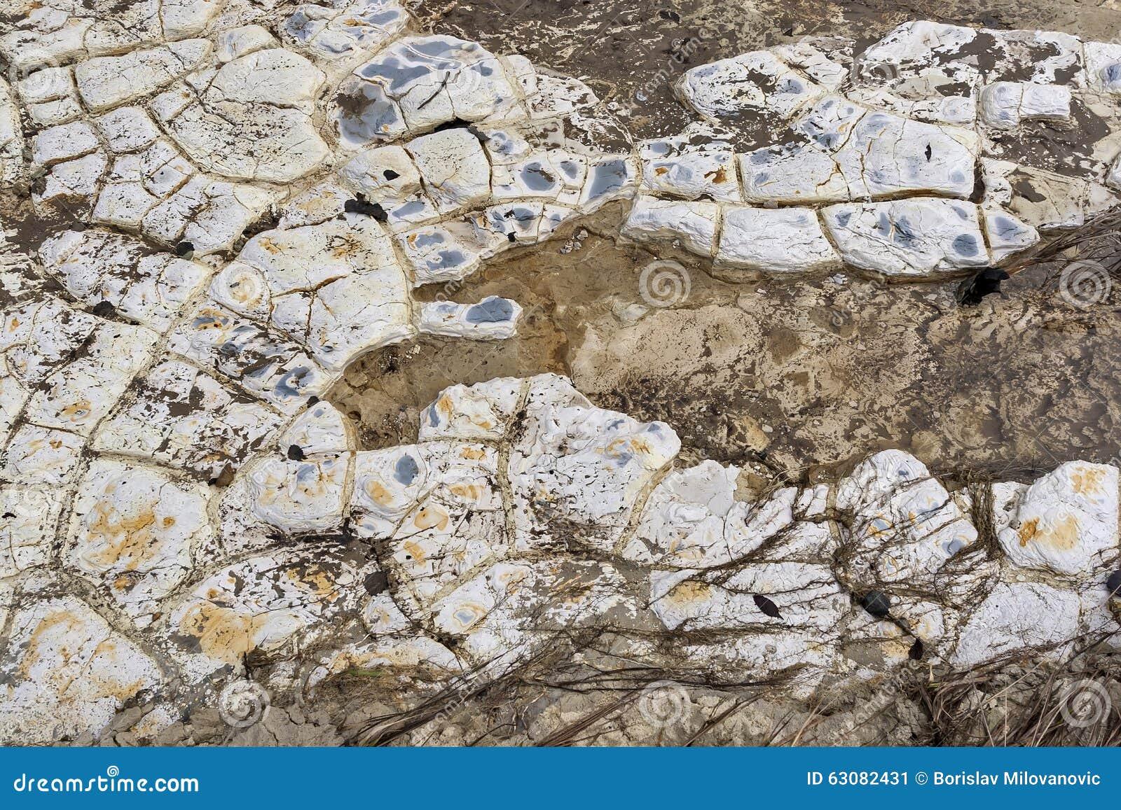 Download BorskaReka10 image stock. Image du écosystème, pollution - 63082431