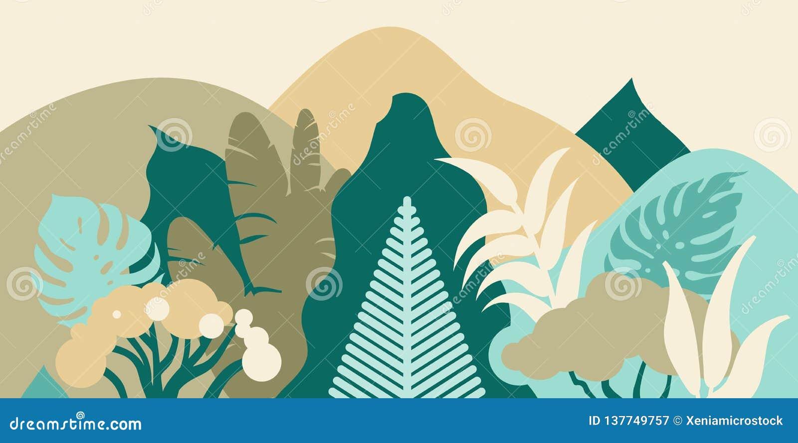 Bos in de bergen met tropische installaties Landschap voor toerisme Behoud van het milieu Park, openluchtruimte